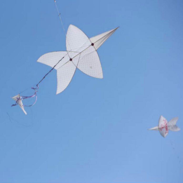 Flying Jam by Thai Kite Association