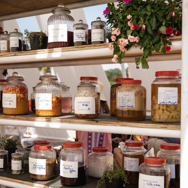 Camp Edible: Ferment and Make Friends by Blackitch Artisan Kitchen